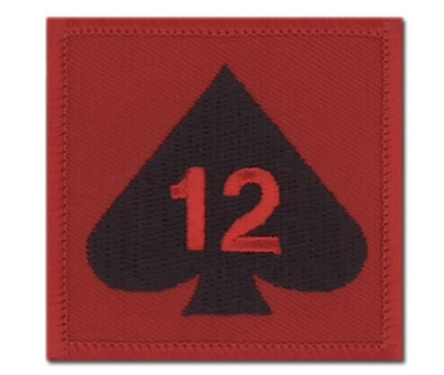 12 Mech Bde TRF