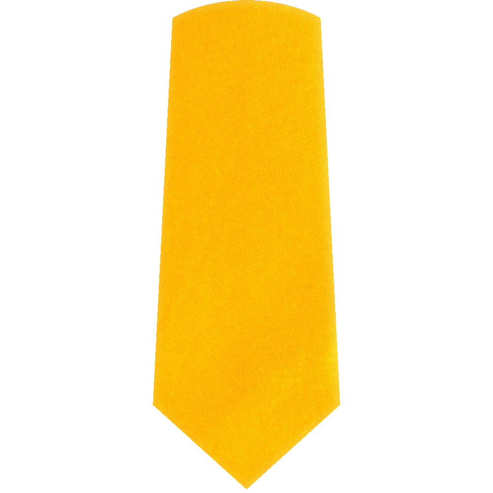 Gold Satin Necktie (Skinny) - alternative view - University graduation gift