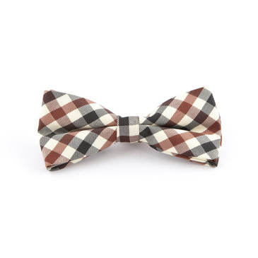 Earthy Check Bowtie - main view - University graduation gift