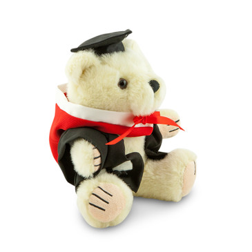 CSU Masters Bear - Arts; pictured in small size and with matching hood