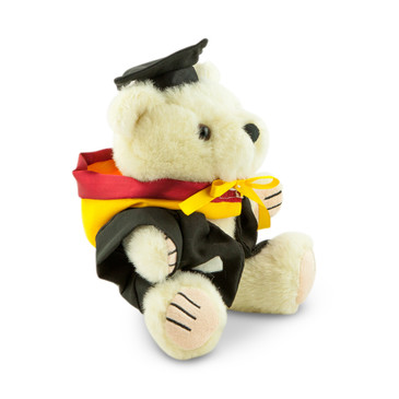 UNSW Bachelor Bear - Engineering; pictured in small size and with matching hood