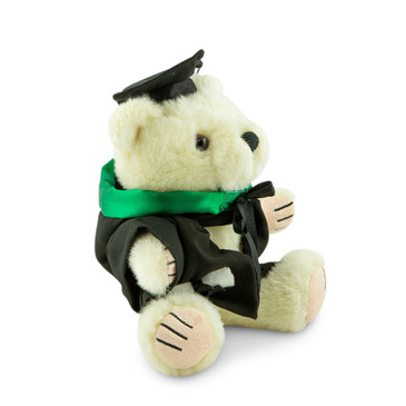 QUT Masters Bear - Education; pictured in small size and with matching hood