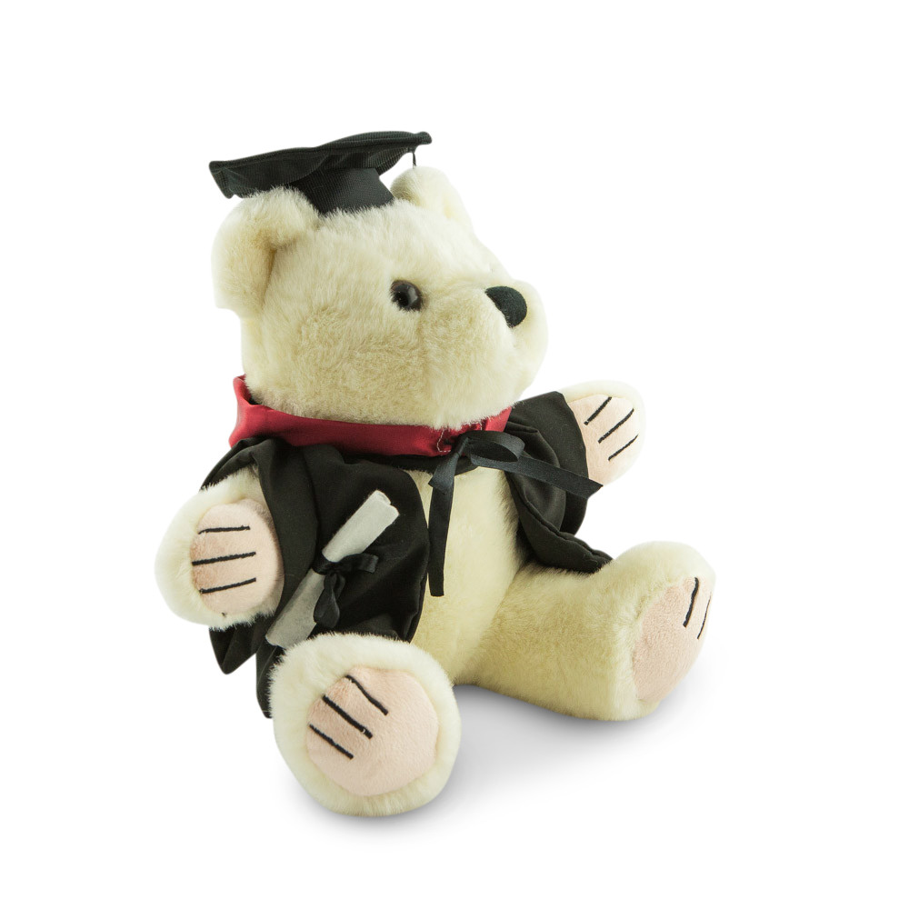 University of Sydney Bachelor Bear - Engineering; pictured in large size and with matching hood