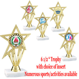 """Star Trophy with choice of insert. 6 1/2"""" tall.  Numerous sports, activities and glitter inserts available."""