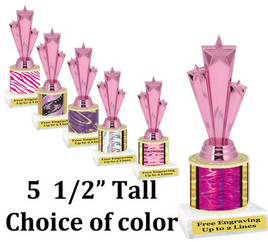 "5  1/2"" tall trophy with choice of color.  Great for side awards and participation.  (134-h)"