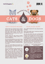Cats and Dogs Recipe Sheet