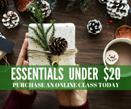 Essentials Under $20 Class | Compliant Social Media Downloadable Workshop