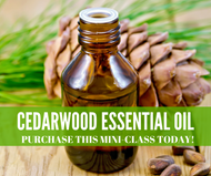 Cedarwood Essential Oil Mini-Class | Compliant Social Media Downloadable Workshop