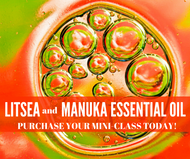 Litsea and Manuka Essential Oil Mini-Class | Compliant Social Media Downloadable Workshop