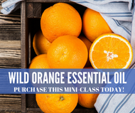Wild Orange Essential Oil Mini-Class | Compliant Social Media Downloadable Workshop