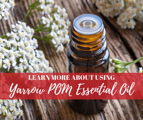 Yarrow | Pom Essential Oil Mini-Class | Compliant Social Media Downloadable Workshop