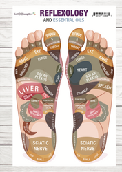 Reflexology and Essential Oils Resource Card