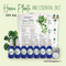 House Plants and Essential Oils DIY Kit