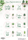 House Plants and Essential Oils Label Sheet (red lines are cut lines and are not printed)