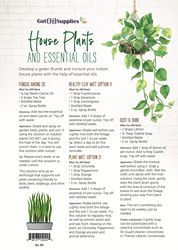House Plants and Essential Oils Recipe Sheets (front only)