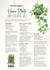 House Plants & Essential Oils Recipe Sheet (front page)
