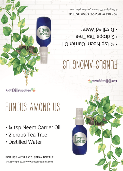 House Plants and Essential Oils Tent Cards | Digital Download