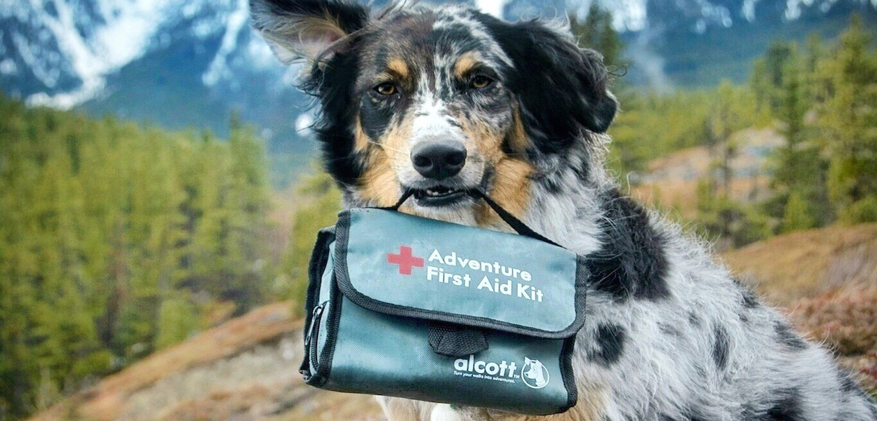 alcott-adventure-first-aid-kit-banner.jpg