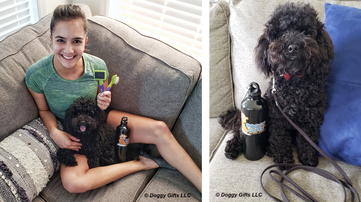 bo-and-lil-pals-grooming-products-banner.jpg