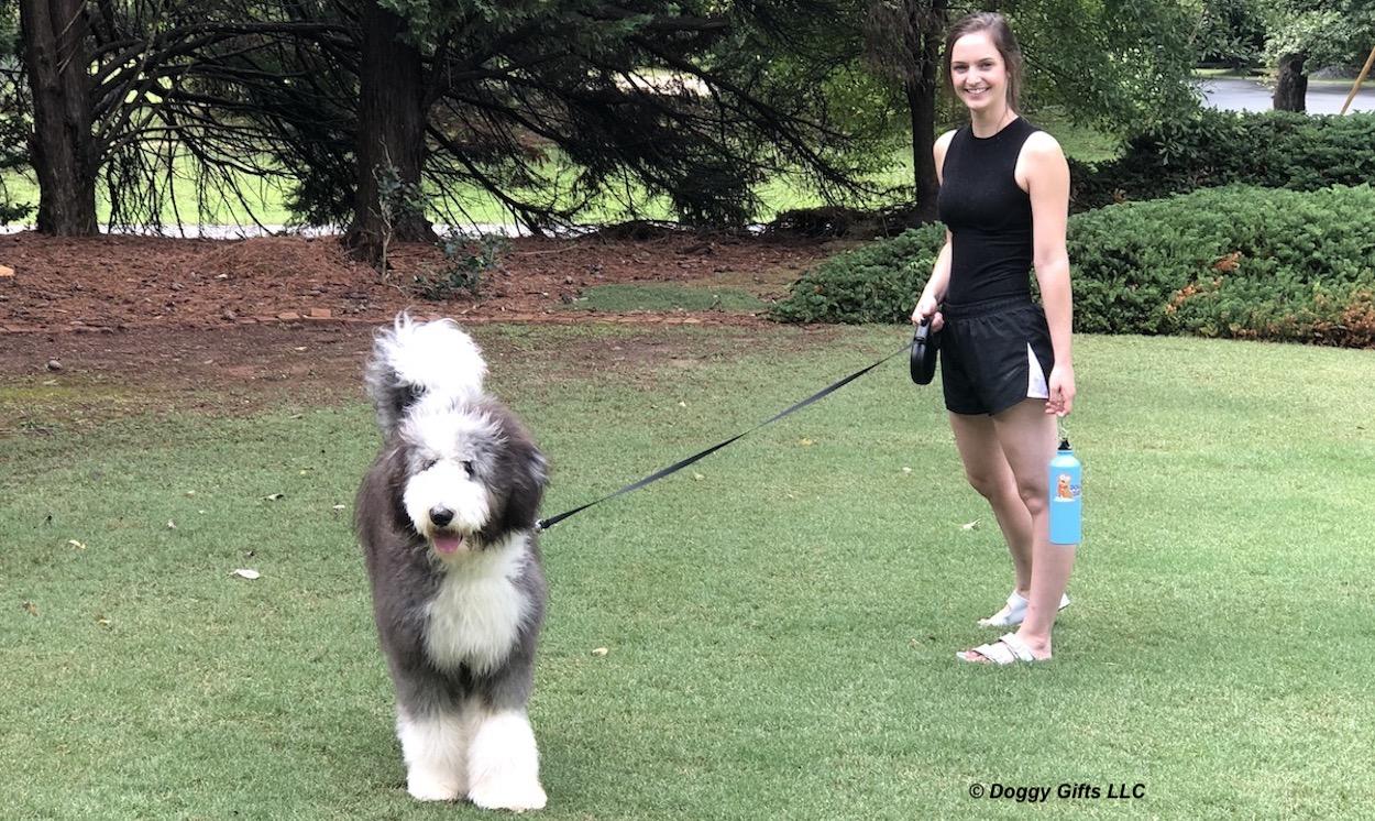 henrythesheepadoodle-and-mom-love-a-walk-with-their-coastal-pet-power-walker-leash-banner.jpg