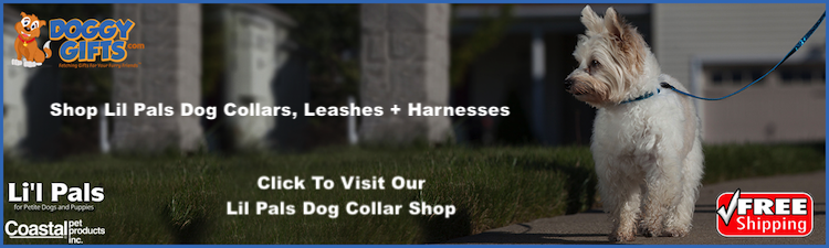 lil-pals-dog-collar-leash-and-harness-mini-banner.png