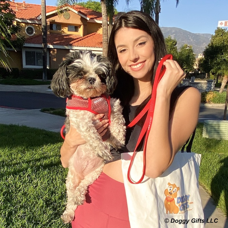 maggie-in-coastal-pet-personalized-leash-and-harness-copy.jpg