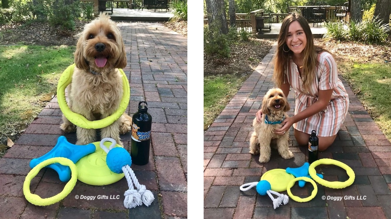 miller-and-his-coastal-pet-pro-fit-dog-toys-banner.jpg