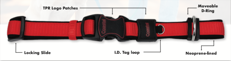 new-inspire-collar-detail-image.png