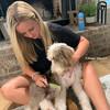 Reggie and Mom Using Safari by Coastal Pet Shedding Dog Comb With Rotating Teeth