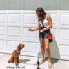 Kona learns new tricks from his mom Coastal Pet treat bag