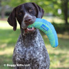 Look at Ruger and his Rascals Fetch Dog Toy Boomerang 10 Inch (84706NCLDOG)