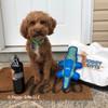 konatheminidood loves his Coastal Pet Rascals Fetch Alligator Dog Toy