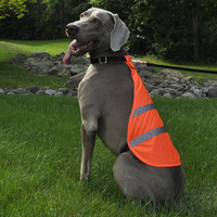Coastal Pet Reflective Safety Vest On Dog
