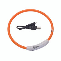 Coastal Pet USB Light Up neck Ring