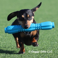 Look at Sadie Go! Love Her Pro Fit Stick Dog Toy