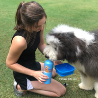 Henrythesheepadoodle and mom on a hike with Bergan Collapsible Water Bowl