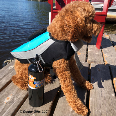 Kona boating day wearing Alcott dog life jacket