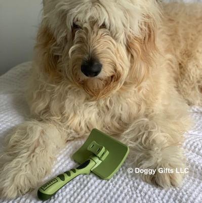 Hamilton models Safari by Coastal Pet Self-Cleaning Slicker Brush