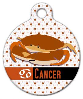 Dog Tag Art Cancer Pet ID Dog Tag