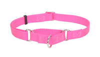 Coastal Pet Martingale Adjustable Nylon Dog Collar (6407)