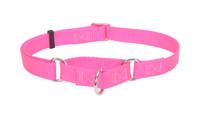 Coastal Pet Martingale Adjustable Nylon Dog Collar (6407)