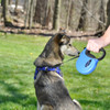Power Walker by Coastal Pet Retractable Leash With Reflective Stitching With Dog Blue Large