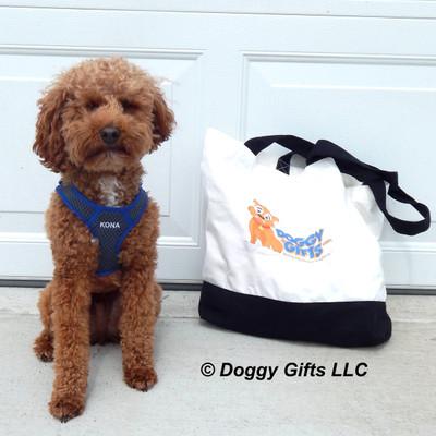 Kona loves his Coastal Pet Personalized Comfort Soft Sport Harness