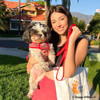 Maggie in Coastal Pet personalized leash and harness