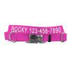 Coastal Pet Metal Buckle Adjustable Nylon Dog Collar Personalized (61401E)
