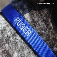 Close Up Personalization  Coastal Pet Double Ply Standard Nylon Dog Collar Personalized (2901E) Blue BLU