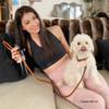 Stella looks great in her Circle T Oak Tanned Leather Personalized Leash