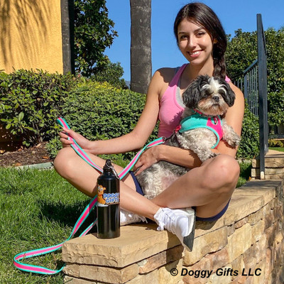 Maggie wearing Coastal Pet Pro Reflective harness and leash
