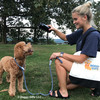 Sammy and Mom Playing In Park Wearing K9 Explorer Rope Slip Leash