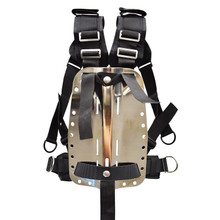 Palantic Deluxe Backplate Harness System